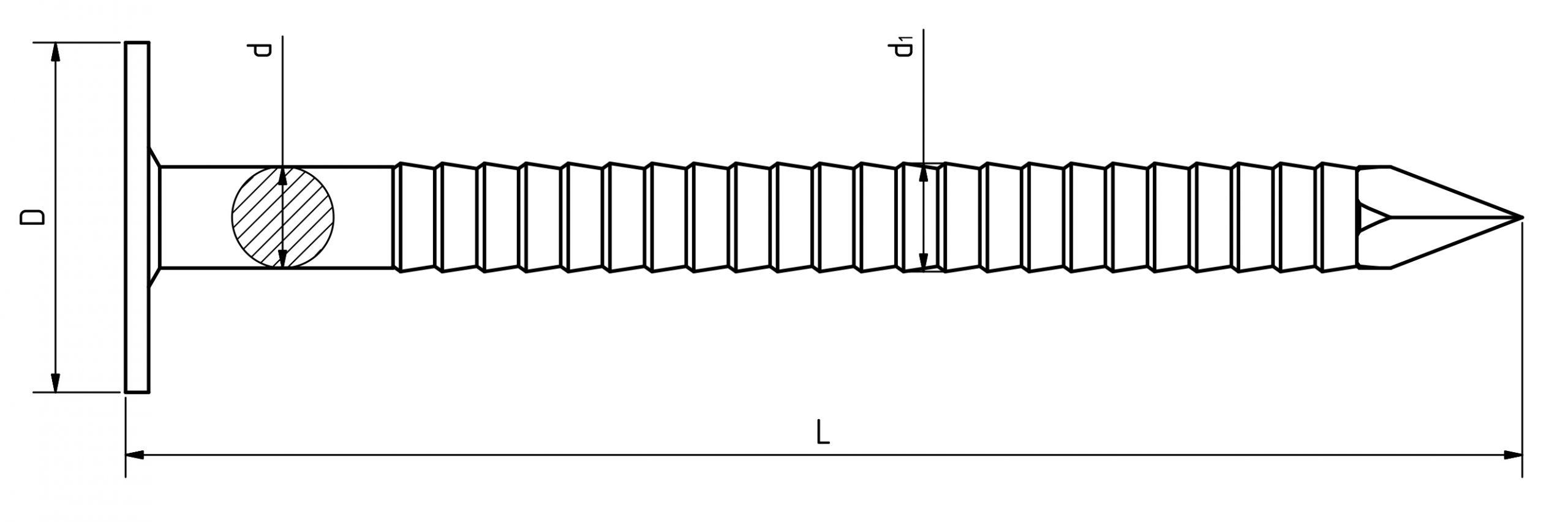 3.1.6_Schiefernägel-Ringschaft-31x40